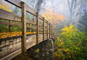 Autumn Appalachian Hiking Trail Foggy Nature Blue Ridge Fall Fol